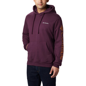 Columbia Viewmont II Sleeve Graphic Capuchon Jas Heren, black cherry